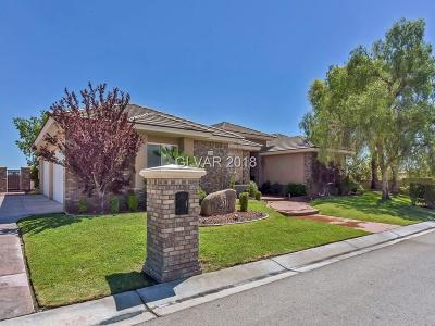 Las Vegas Single Family Home For Sale: 6210 Calm Brook Court