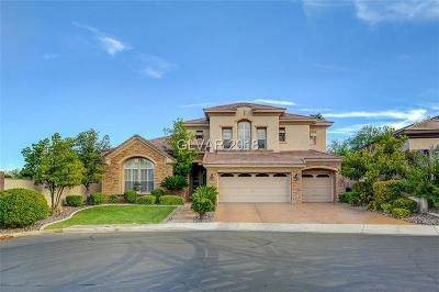 Las Vegas Single Family Home For Sale: 10707 Hobbiton Avenue