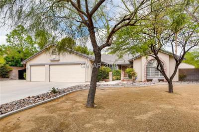 Las Vegas Single Family Home For Sale: 6768 Tara Avenue