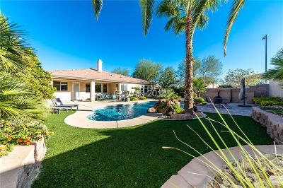 Las Vegas Single Family Home For Sale: 8145 Mountain Forest Court