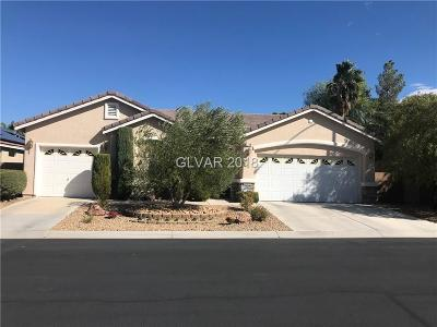Las Vegas Single Family Home For Sale: 3710 Paul De Weert Ct Court