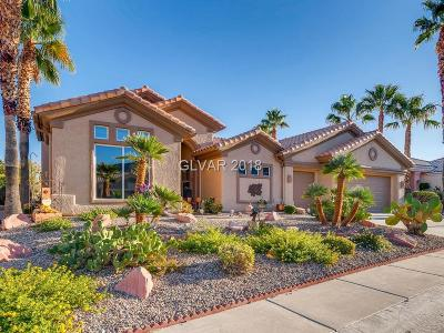 Las Vegas Single Family Home For Sale: 3100 Darby Falls Drive