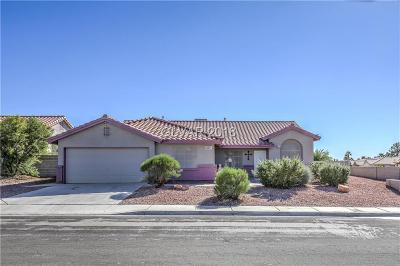 Las Vegas NV Single Family Home For Sale: $308,000