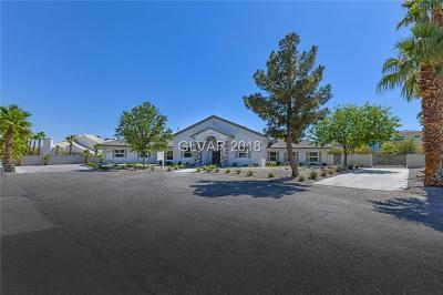 Las Vegas Single Family Home For Sale: 7385 El Parque Avenue