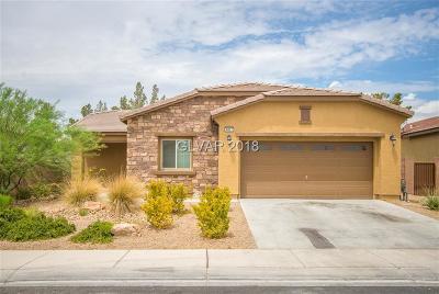 Blue Diamond, Boulder City, Henderson, Las Vegas, North Las Vegas, Pahrump Single Family Home Under Contract - No Show: 4817 Boone Street