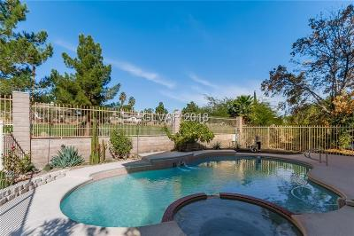 Las Vegas Single Family Home Under Contract - No Show: 4853 Fiesta Lakes Street