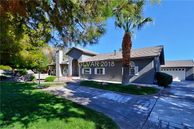 Clark County Single Family Home For Sale: 8616 Haven Street