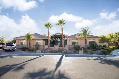 Las Vegas Single Family Home For Sale: 8835 Hickam Avenue