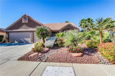 North Las Vegas Single Family Home Under Contract - No Show: 6037 Marvin Street