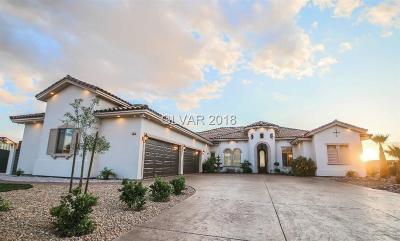 Henderson Single Family Home For Sale: 162 Naples Street