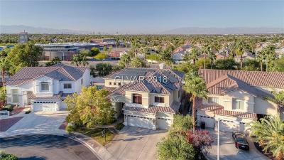 Henderson Single Family Home For Sale: 1716 Sand Storm Court