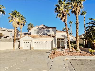 Las Vegas Single Family Home For Sale: 8846 Shamu Court