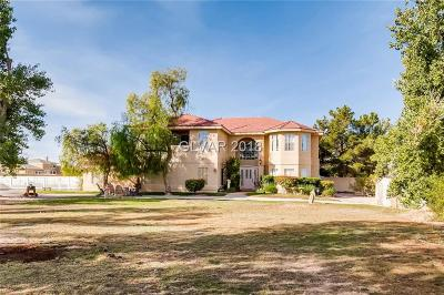 Clark County Single Family Home For Sale: 8925 South Monte Cristo Way