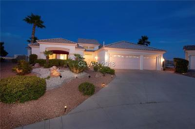 Las Vegas Single Family Home For Sale: 2700 Orchid Valley Drive