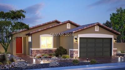 Las Vegas NV Single Family Home For Sale: $321,020