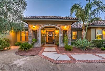 Las Vegas Single Family Home For Sale: 7630 Racel Street