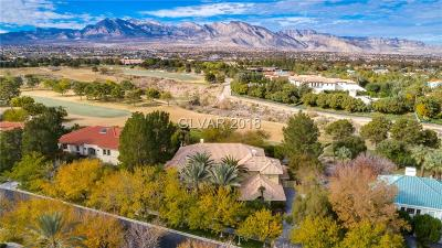 Henderson, Las Vegas, North Las Vegas Single Family Home For Sale: 1417 Iron Hills Lane