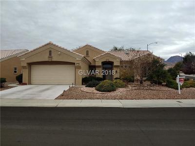 Las Vegas Single Family Home For Sale: 2133 Red Dawn Sky Street