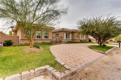 Henderson Single Family Home For Sale: 1521 Latigo Drive