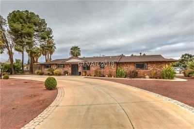 Las Vegas Single Family Home For Sale: 1948 Gabriel Drive