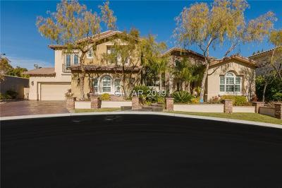 Las Vegas Single Family Home For Sale: 11558 Trevi Fountain Avenue