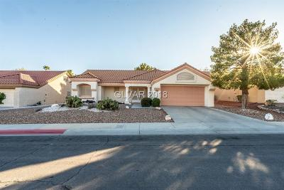 Las Vegas Single Family Home For Sale: 8909 Sandspring Drive