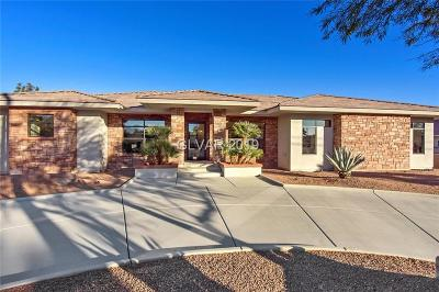 Las Vegas Single Family Home For Sale: 801 Campbell Drive