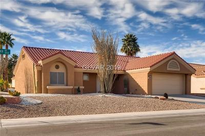 Las Vegas Single Family Home For Sale: 8913 Signal Terrace Drive