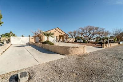 Las Vegas Single Family Home For Sale: 3700 Thom Boulevard