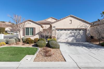Clark County Single Family Home For Sale: 2494 Starlight Valley Street
