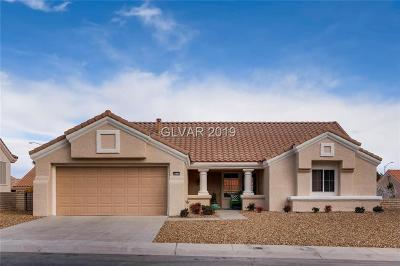 Clark County Single Family Home For Sale: 9012 Mountain Gate Drive