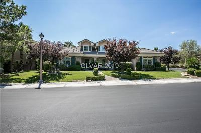 Single Family Home Under Contract - Show: 10017 Cresent Mesa