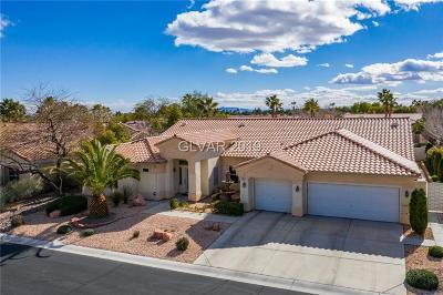Clark County Single Family Home For Sale: 7521 Cedar Rae Avenue