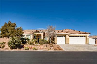Las Vegas Single Family Home For Sale: 6456 Sandy Copper Court