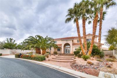 Las Vegas Single Family Home For Sale: 7330 Real Quiet Drive