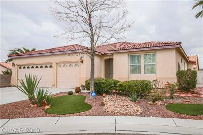 North Las Vegas Single Family Home For Sale: 5303 Eel River Court