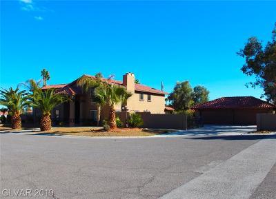 Las Vegas Single Family Home For Sale: 2985 Montessouri Street