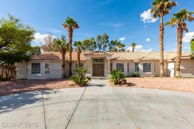 Las Vegas Single Family Home For Sale: 3220 Vicki Avenue