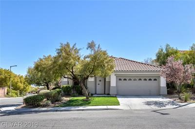 Las Vegas Single Family Home For Sale: 11073 Village Ridge Lane