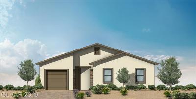 Clark County Single Family Home For Sale: 5510 Stormy Night Court
