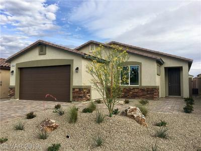 Las Vegas Single Family Home For Sale: 5877 Peridot Falls Avenue #Lot 120