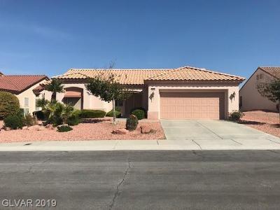 Single Family Home For Sale: 2816 Castle Bar Drive