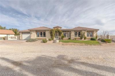Las Vegas  Single Family Home For Sale: 8965 S Tenaya Way