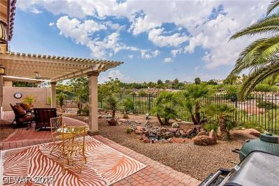 Henderson Single Family Home For Sale: 1207 Panini Drive