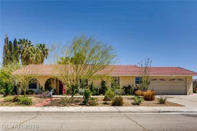 Boulder City Single Family Home For Sale: 1547 Irene Drive