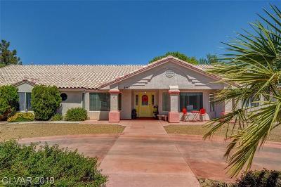 Las Vegas Single Family Home For Sale: 8460 Ann Road