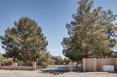Las Vegas Single Family Home For Sale: 6925 Donald Nelson Avenue