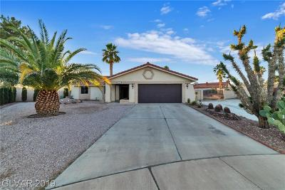 Las Vegas Single Family Home For Sale: 1329 Bobrich Circle Circle