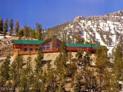 Mount Charleston NV Single Family Home For Sale: $1,450,000