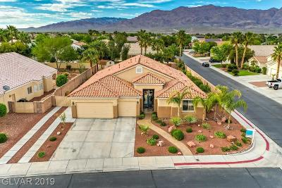 Single Family Home Under Contract - Show: 7681 Majestic Springs Drive